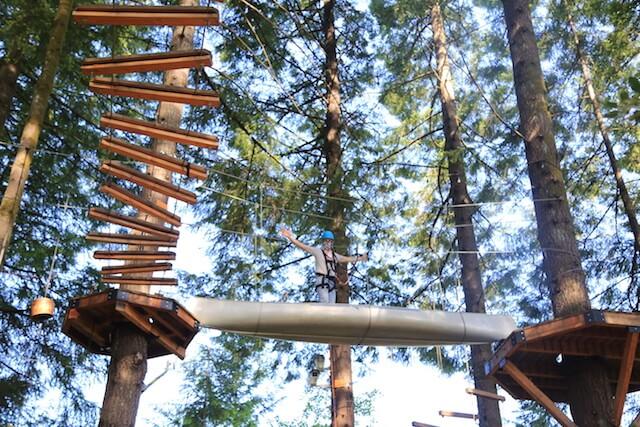 Tree-Top Adventures